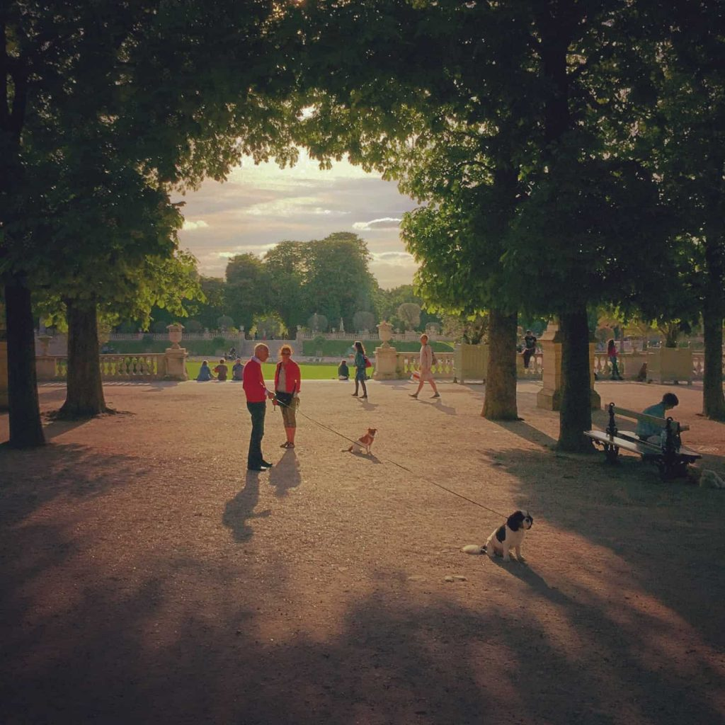 The Best Time to Visit Paris  - spring! A man walking his dog in Luxembourg Gardens